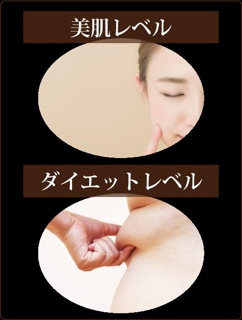 kit-wakaru2